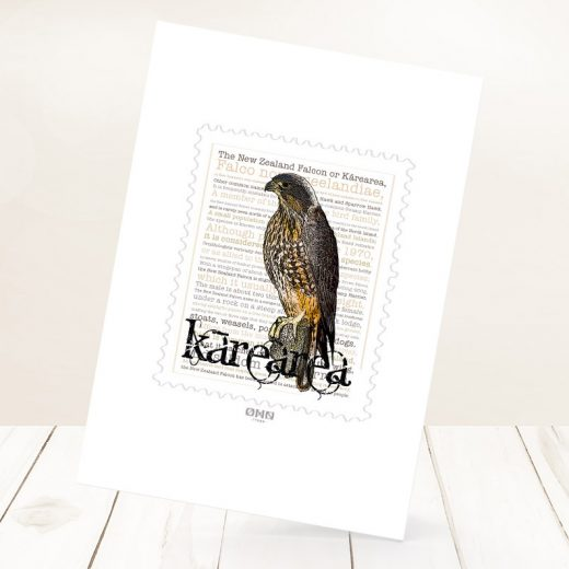 Kārearea print on card